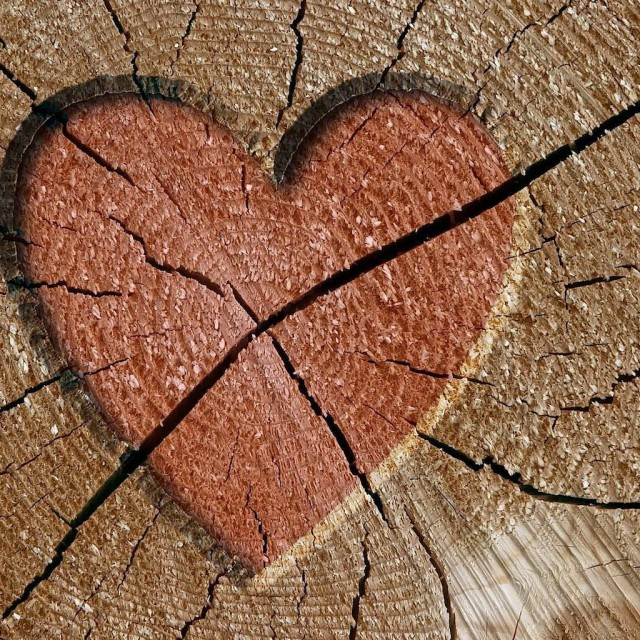 heart broken wood